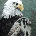 !eagles