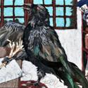 !raven